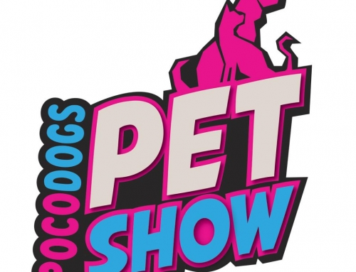 Pocodogs Pet Show 2020